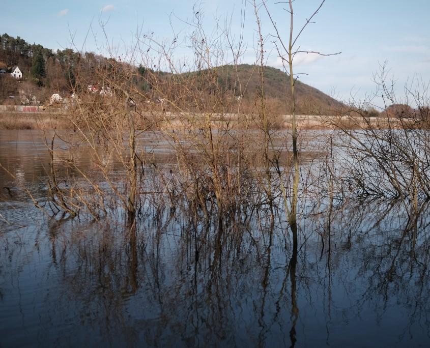 Moselle riverside 1